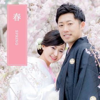 春の桜シーズンの嵐山で前撮り