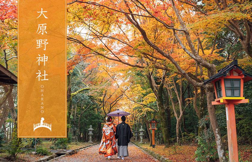 大原野神社での前撮り