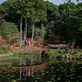 大原野神社で和装前撮り-03