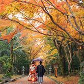 大原野神社で和装前撮り-05