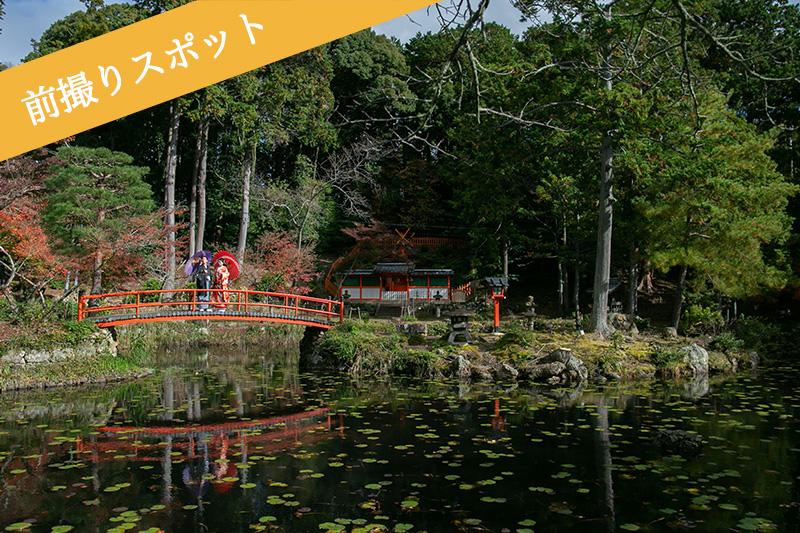 大原野神社の鯉沢の池で前撮り