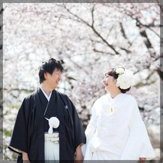京都前撮り(春の桜)