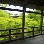 京都前撮りのロケ地「東福寺」