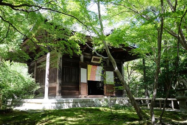 蓮華寺の本堂