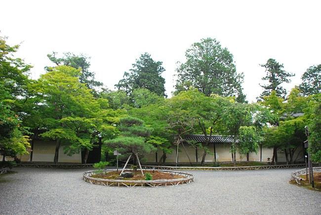 二尊院の勅使門と龍神遊行の庭園