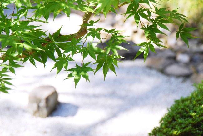 二尊院庭園「寂光園」