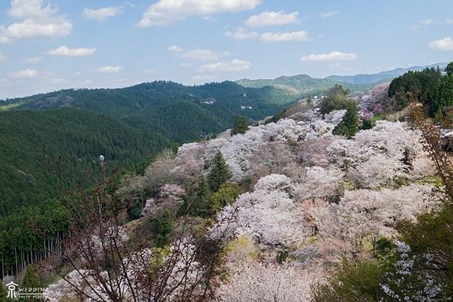 吉野山の名所