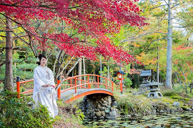 池のまわりに綺麗な紅葉