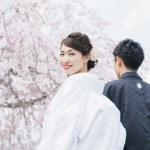 白無垢と枝垂れ桜