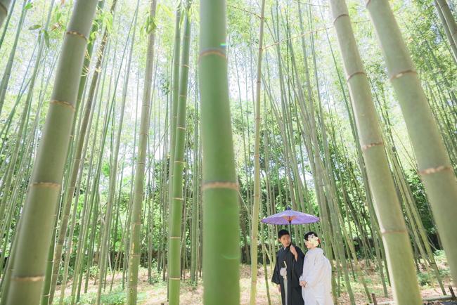 竹林を散歩するお二人