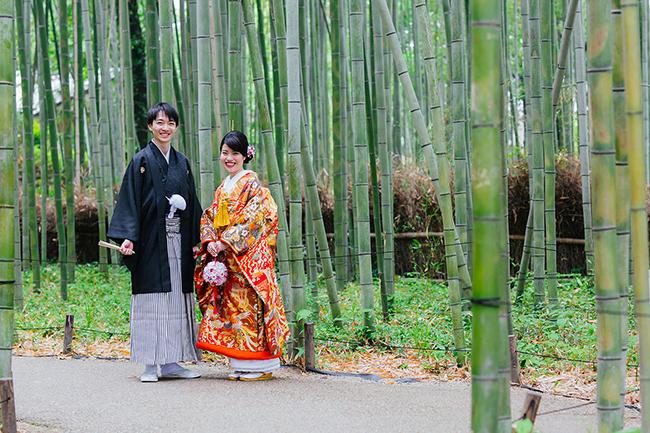 嵯峨野の竹林に色打掛がよく映えます