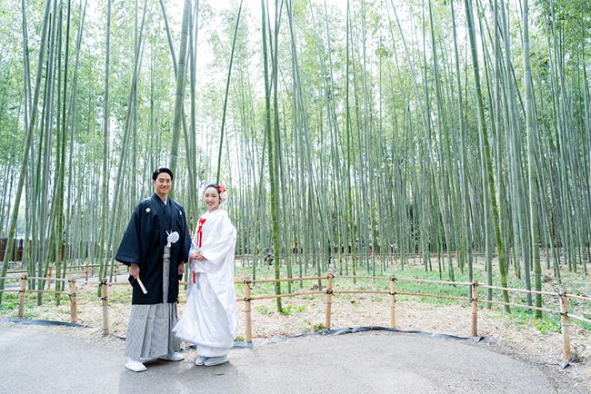 白無垢と竹林で和装前撮り!