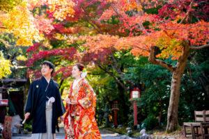 紫式部も愛した紅葉の名所!大原野神社!