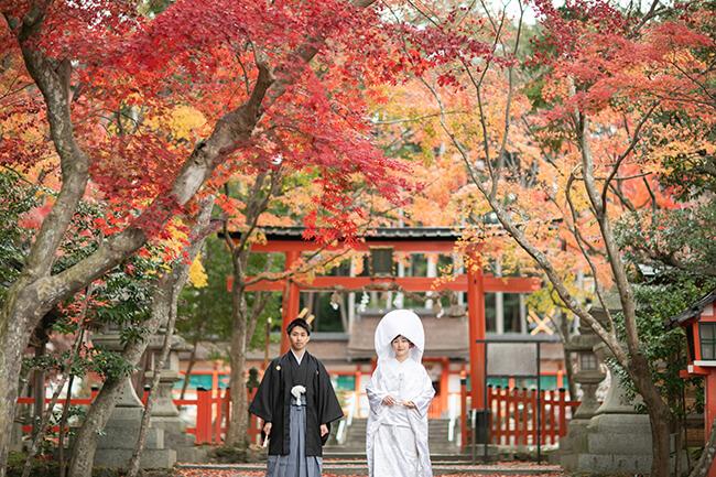 大原野神社の紅葉時期に和装前撮り